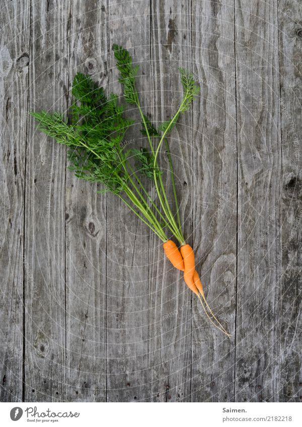 Love is in the earth... Natur Sommer Farbe grün Leben Gesundheit Liebe Holz Garten orange Ernährung einzigartig Leidenschaft Bioprodukte Partnerschaft