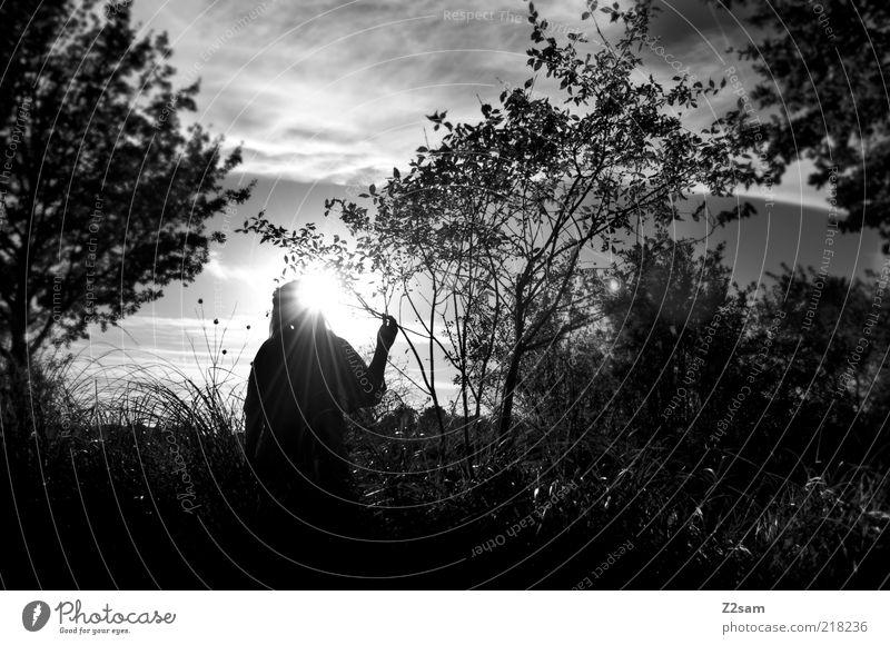 dark sunshine Frau Himmel Baum Sonne Blatt Einsamkeit ruhig Erwachsene Umwelt Wiese dunkel Landschaft Gras Traurigkeit träumen elegant