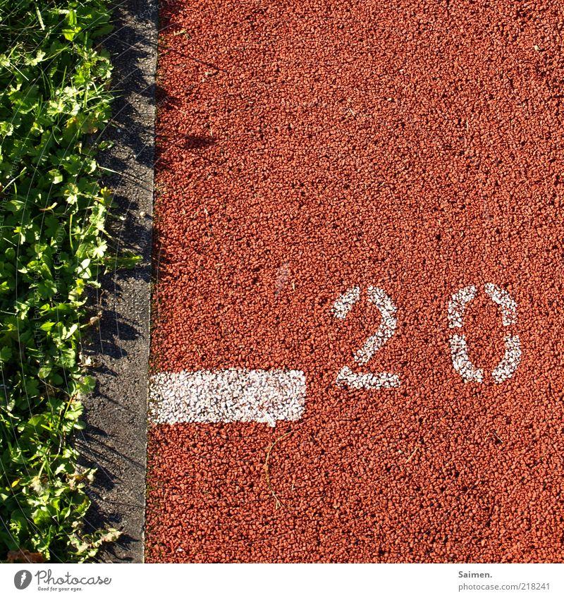 Bewegungsuntergrund grün rot Sport Wiese Gras Linie Wachstum Ziffern & Zahlen Blume 20 Gummi Klee Symbole & Metaphern Tartan Sportstätten Laufbahn