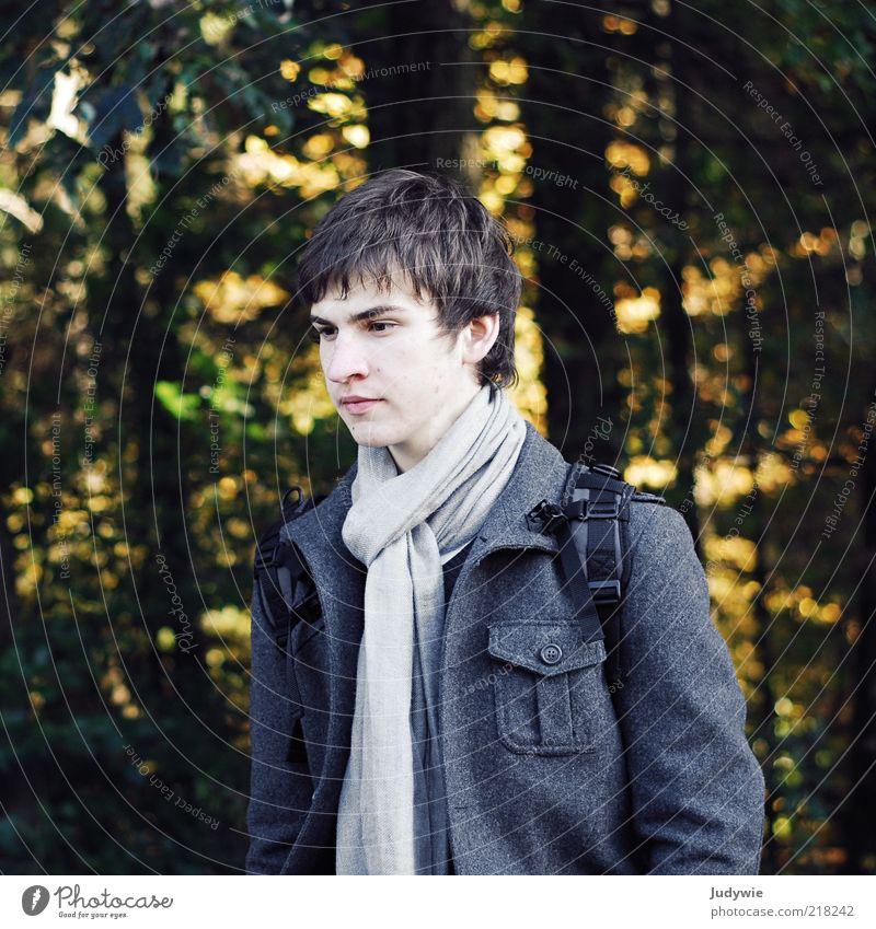 Anderswo Mensch Natur Jugendliche Baum ruhig Wald kalt Herbst Gefühle grau Traurigkeit Denken warten Mode wandern