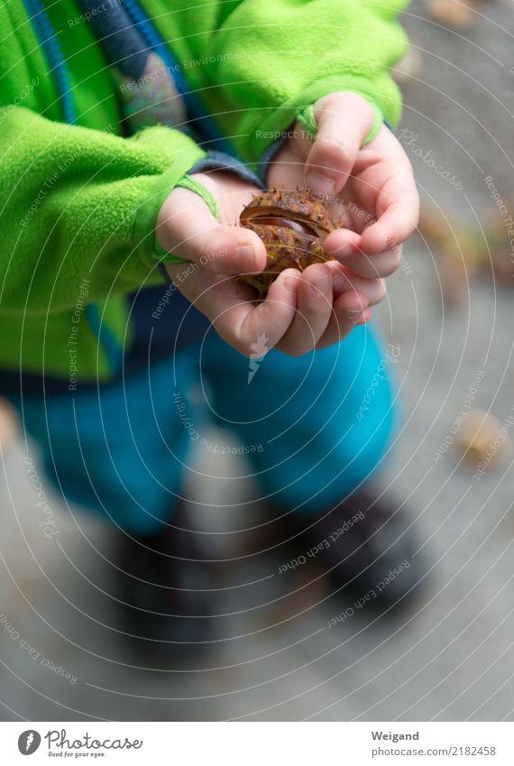 Überraschungsei harmonisch Wohlgefühl Zufriedenheit Sinnesorgane Erholung ruhig Meditation Kleinkind Mädchen Junge Kindheit 1 Mensch 3-8 Jahre drehen Duft braun