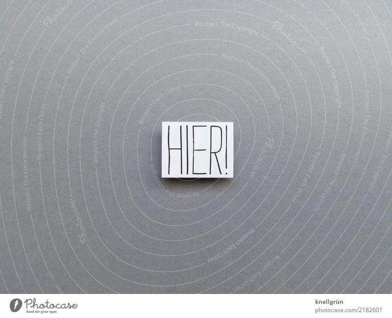 HIER! weiß schwarz grau Schriftzeichen Kommunizieren Schilder & Markierungen Neugier eckig Interesse