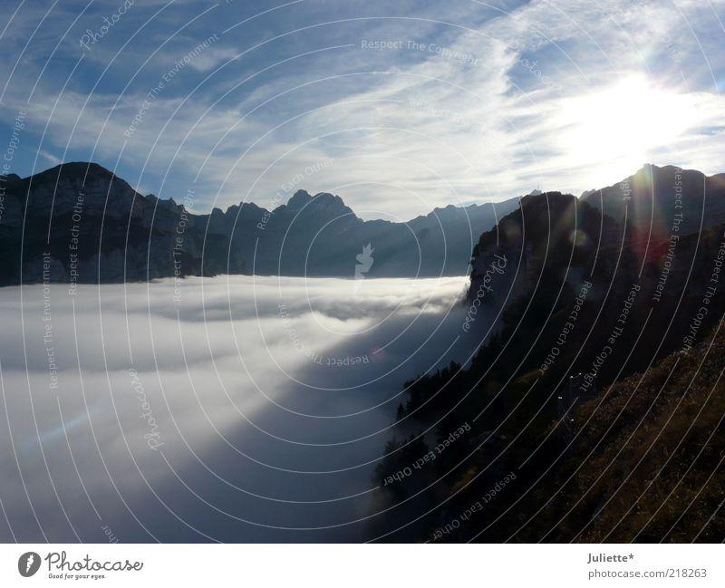 Über den Wolken ( Appenzeller Berge) Natur Landschaft Urelemente Luft Himmel Horizont Sonne Sonnenlicht Herbst Wetter Schönes Wetter Nebel Alpen