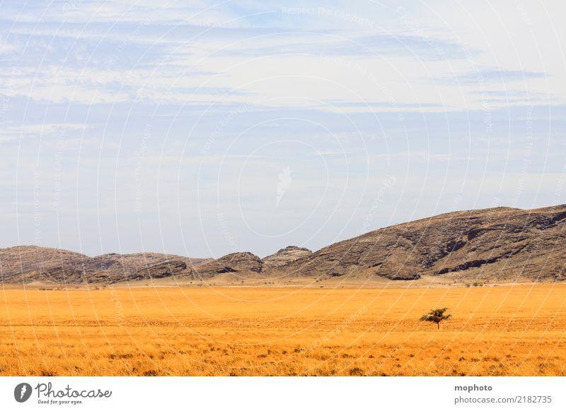 Weite pur Ferien & Urlaub & Reisen Tourismus Abenteuer Ferne Freiheit Safari Sommerurlaub Umwelt Natur Landschaft Wolken Horizont Klima Schönes Wetter Wärme