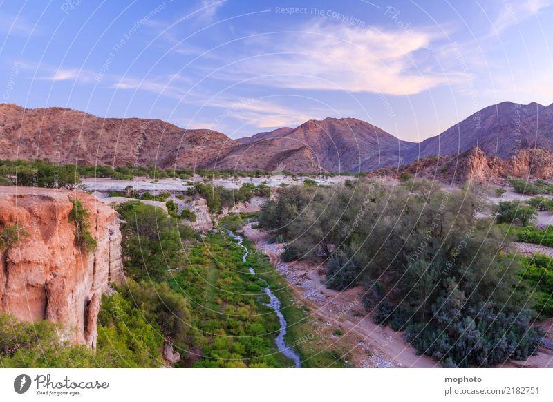 Wasser in der Wüste Ferien & Urlaub & Reisen Tourismus Abenteuer Ferne Safari Sommerurlaub Umwelt Natur Landschaft Wärme Dürre Flussufer Bach Oase