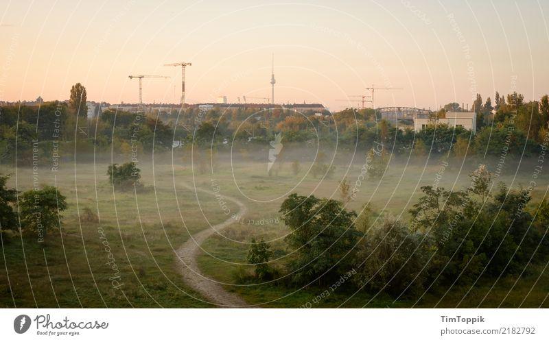 Entschuldigen Sie, ist das der Sonderblick aus Pankow? Umwelt Natur Landschaft Baum Gras Sträucher Häusliches Leben Berlin Berliner Fernsehturm Wege & Pfade