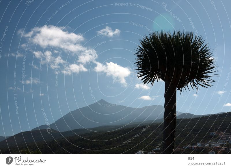Struwelpeter Himmel Baum Wolken Berge u. Gebirge Landschaft exotisch Vulkan