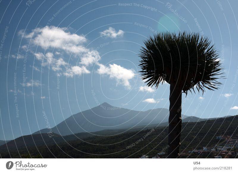 Struwelpeter Landschaft Himmel Wolken Baum Berge u. Gebirge Vulkan exotisch Farbfoto Außenaufnahme Tag Silhouette Sonnenlicht Gegenlicht