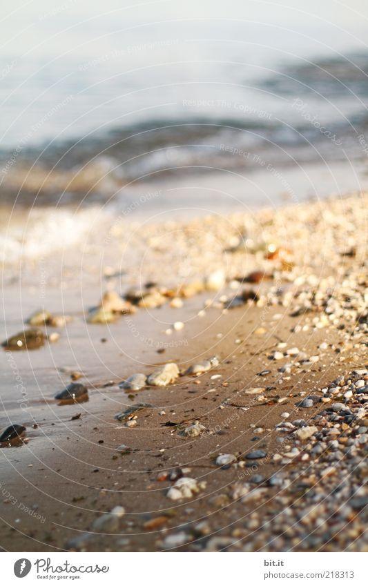 Strand Natur Wasser Sommer Meer Landschaft Freiheit Küste Sand Stein See Stimmung braun Erde Wellen Urelemente