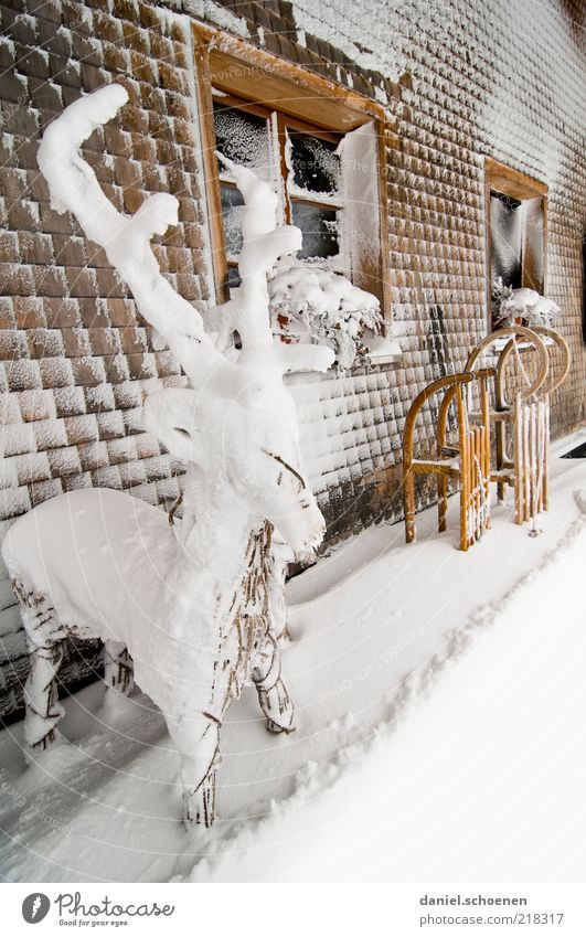 Schwarzwaldwinter Weihnachten & Advent Winter kalt Schnee Fenster Holz Eis hell Fassade Ausflug Frost Klima Dekoration & Verzierung Horn Hirsche