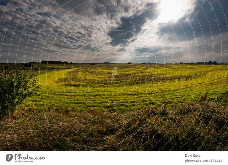 Licht und Schatten Landschaft Himmel Wolken Sonnenlicht Sommer Herbst Schönes Wetter Insel Rügen Zukunftsangst unheilvoll leuchten leuchtend grün Kreis Feld