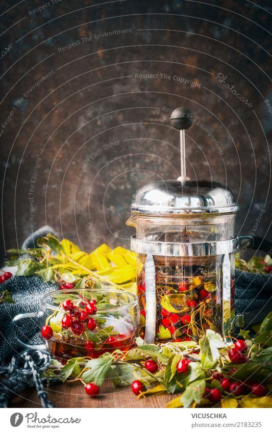 Herbst Tee machen Getränk Heißgetränk Geschirr Tasse Lifestyle Stil Design Häusliches Leben Tisch Natur Rose trendy retro Teekanne Vitamin Erkältung Schal Blatt