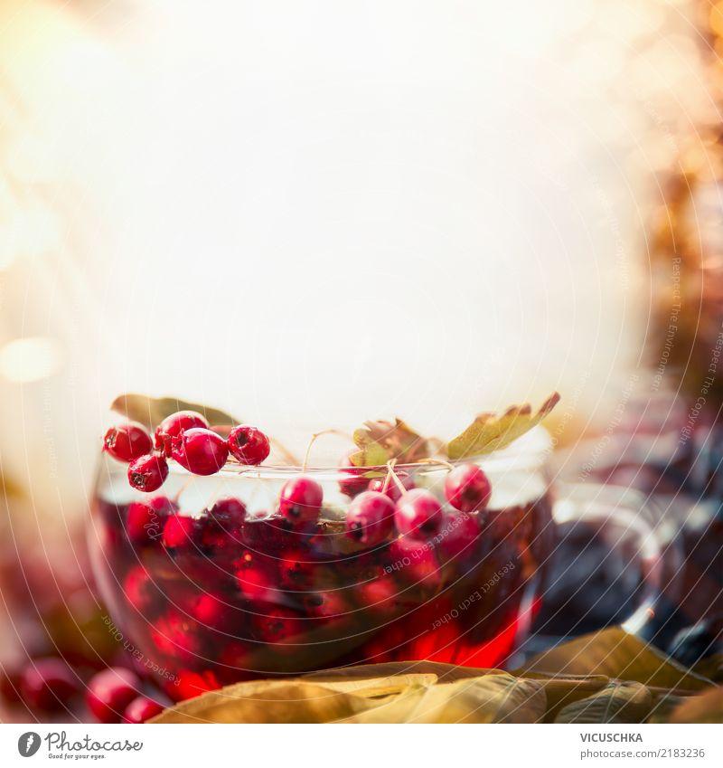 Tasse mit Herbsttee Lebensmittel Getränk Heißgetränk Tee Stil Design Gesundheit Alternativmedizin Gesunde Ernährung harmonisch Sinnesorgane Erholung Winter