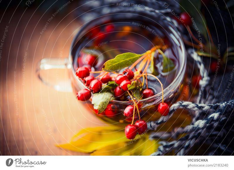 Tasse Herbst Tee mit roten Beeren, Herbst Blätter und Schal Getränk Heißgetränk Lifestyle Stil Design Gesundheit Gesunde Ernährung Häusliches Leben Natur