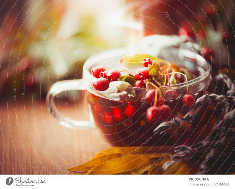 Herbstliche Tasse Tee mit roten Beeren von Weißdorn Getränk Heißgetränk Lifestyle Stil Design Gesundheit Alternativmedizin Leben Erholung Häusliches Leben