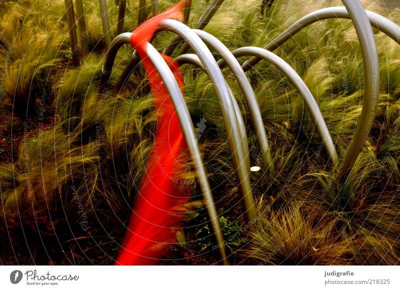 Tanz Natur rot Pflanze dunkel Gras Stimmung Metall Kunst elegant natürlich geheimnisvoll Schnur Stengel Bewegungsunschärfe skurril Stab