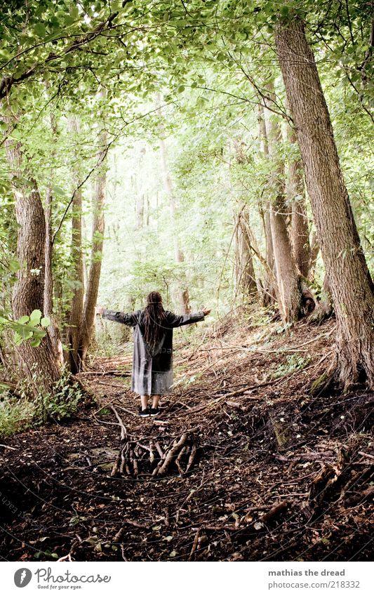 DER WALD UND ICH Mensch maskulin Umwelt Natur Landschaft Pflanze Sommer Schönes Wetter Baum Blume Sträucher Wald Mantel Umhang langhaarig Erholung genießen