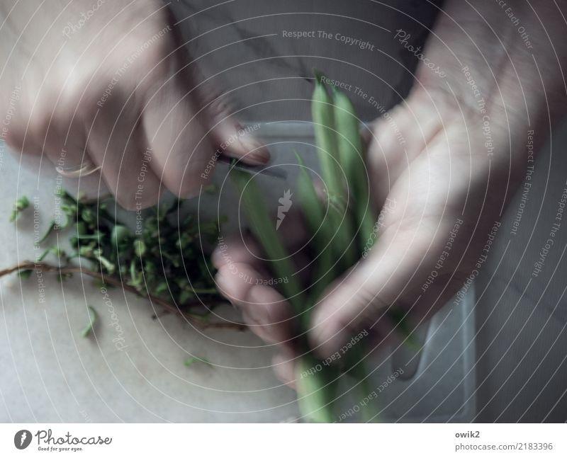 Schnellgericht Arbeit & Erwerbstätigkeit Hand Finger Messer Bohnen gewissenhaft geduldig fleißig Ausdauer schneiden Geschwindigkeit Schneidebrett Vorbereitung