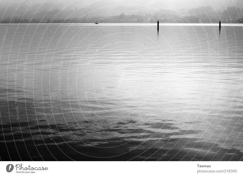 How To Disappear Completely Wasser Seeufer ruhig fließen liquide Schwarzweißfoto Menschenleer Kontrast Reflexion & Spiegelung Dalben Wasseroberfläche