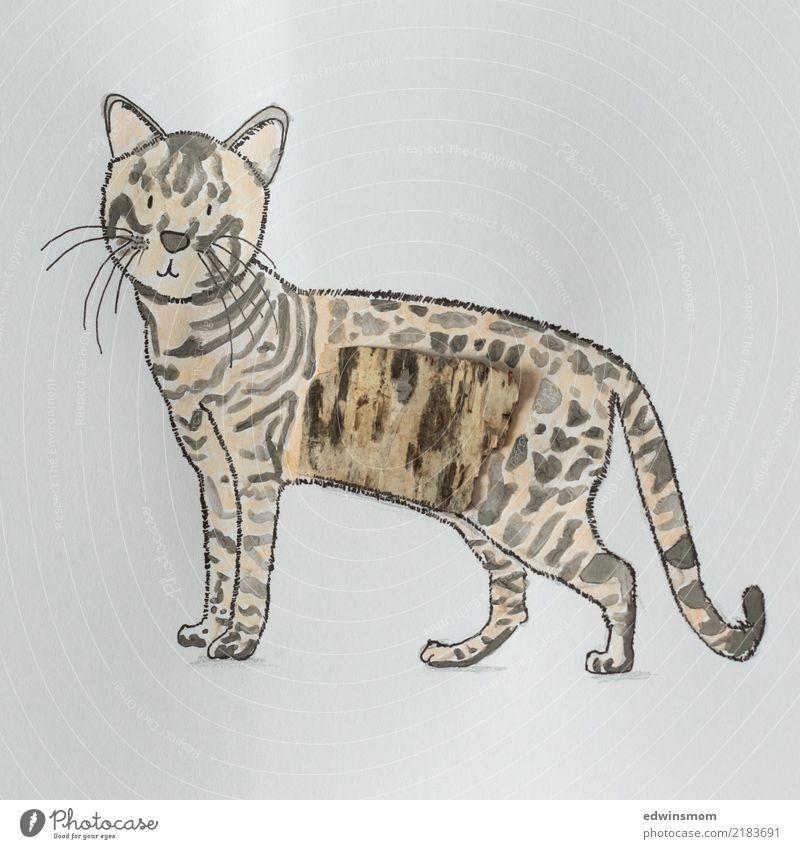 Katze schön Tier ruhig natürlich Holz Freizeit & Hobby wild Dekoration & Verzierung stehen Kreativität warten Idee Papier weich Gelassenheit