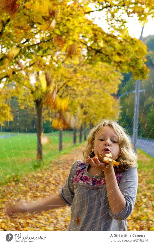 pust Mensch Natur Hand Baum Pflanze Blatt gelb Leben Herbst Spielen Glück Kindheit blond gold Mund einzigartig