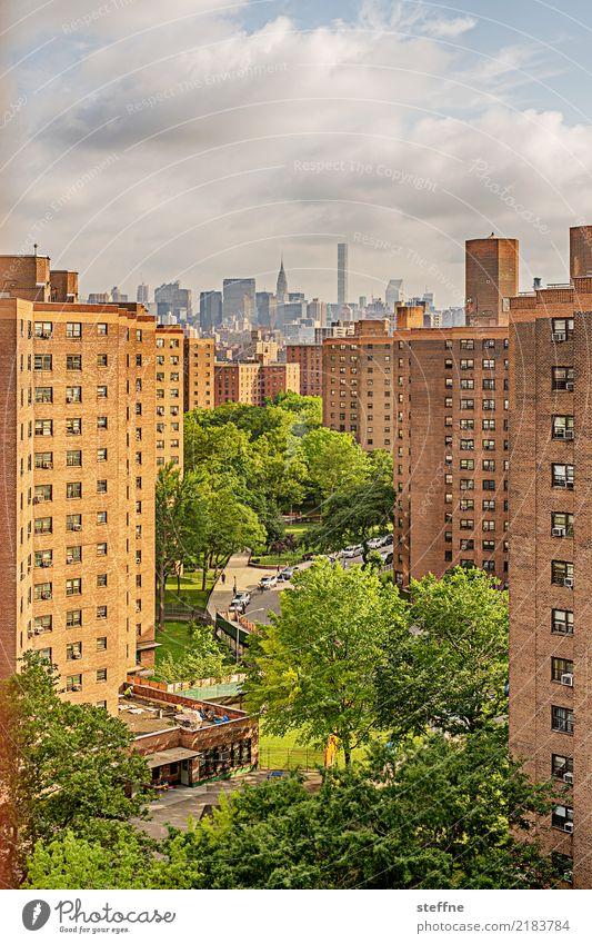 Wohnen in der Stadt II bevölkert überbevölkert Haus Hochhaus Häusliches Leben New York City Manhattan Baum Chrysler Building Farbfoto Außenaufnahme Menschenleer