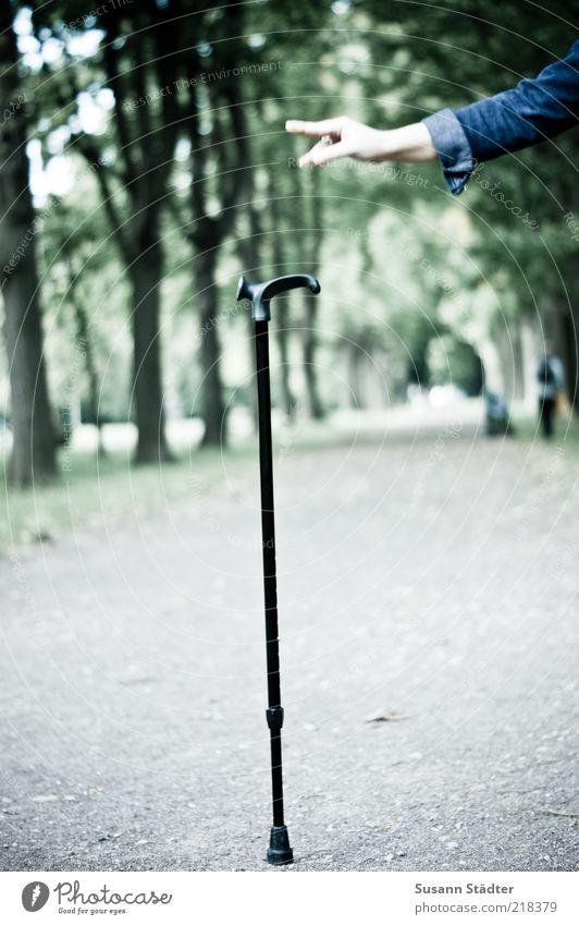 barriereFREI Arme Hand Finger Park gebrauchen laufen Glück Euphorie Kraft frei Spazierstock Gehhilfe loslassen Fußweg positiv Risiko Behindertengerecht