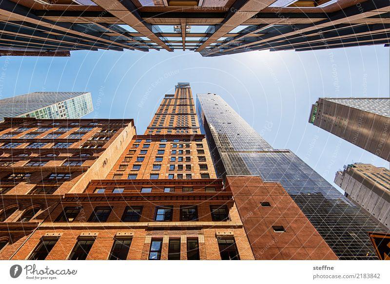 Blick nach oben 3