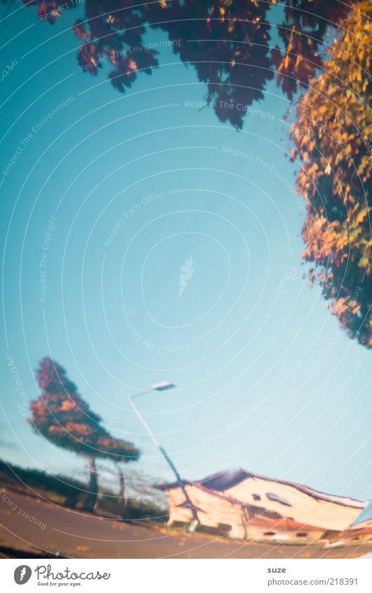 Aus Versehen Himmel Wolkenloser Himmel Herbst Baum Blatt Stadtrand Haus außergewöhnlich blau herbstlich Herbstlaub Herbstbeginn Herbstfärbung Verzerrung Laterne