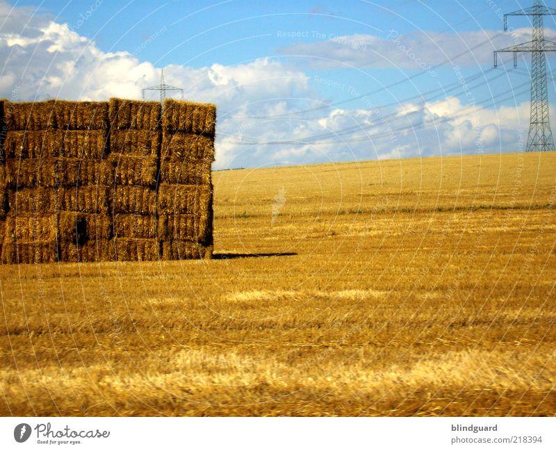 Goldener Herbst Landschaft Himmel Wolken Sommer Schönes Wetter Nutzpflanze Feld blau gelb gold Energie Futter Stroh Strohballen Hochspannungsleitung