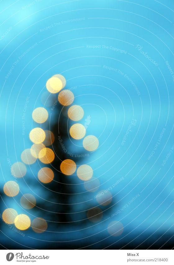 X-Mas Dots Winter Baum leuchten glänzend Weihnachtsbaum Beleuchtung Licht Lichterkette Weihnachtsdekoration Tanne Farbfoto mehrfarbig Außenaufnahme Muster