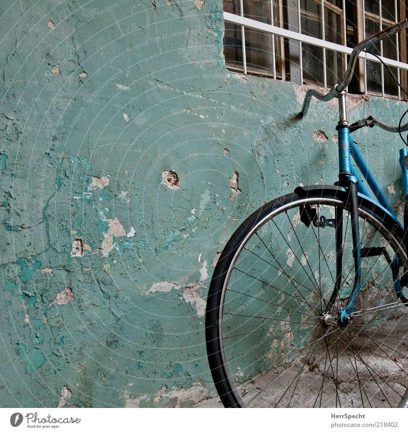Schön alt blau Farbe schwarz dunkel Fenster Wand Mauer außergewöhnlich Fahrrad Fassade dreckig stehen trist Vergänglichkeit Verfall