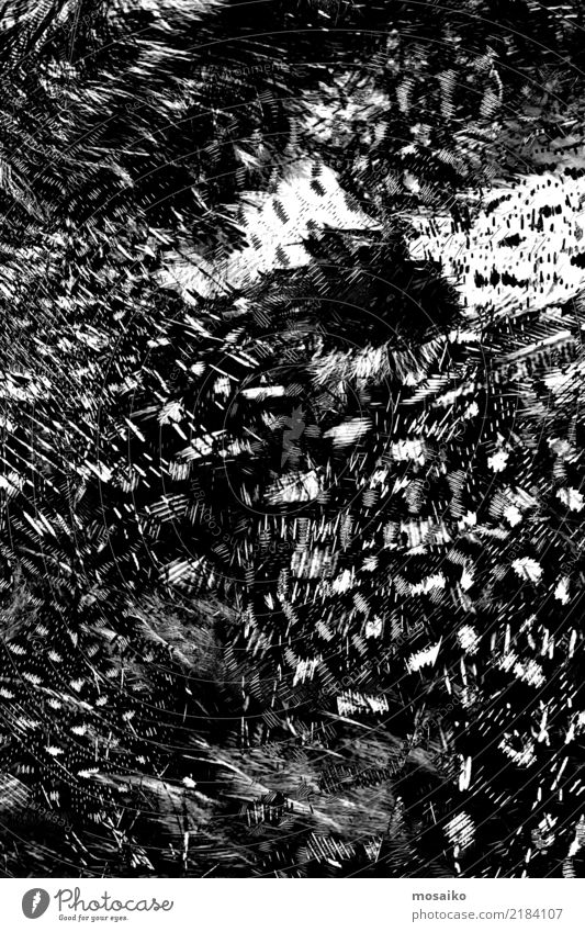 schwarzes Muster - Abstraktes Design weiß dunkel Kunst Mode wild träumen elegant ästhetisch Kreativität Feder fantastisch einzigartig Grafik u. Illustration