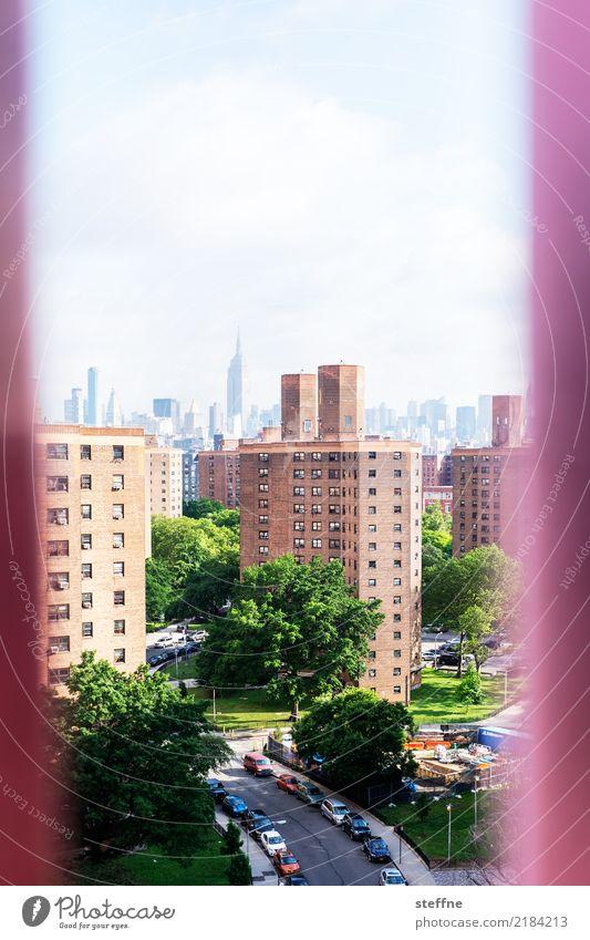 wohnen und arbeiten Baum New York City Manhattan Stadt Skyline überbevölkert Haus Hochhaus Häusliches Leben Farbfoto Außenaufnahme Textfreiraum oben