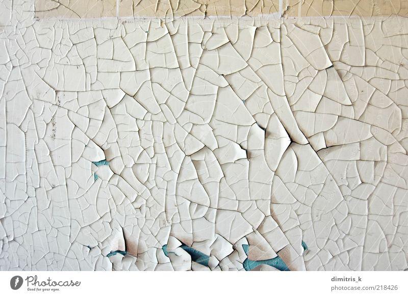 abziehbare Farbe Tapete Mauer Wand alt verblüht dreckig Verfall Verlassen verfallen Verlassenwerden verschlechternd Fehlen desolat Riss Craquelure angeblättert