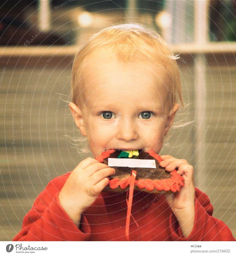 Naschfuchs mit Textfreiraum Kind Freude Auge Ernährung Essen Kindheit Zufriedenheit blond süß Kleinkind Appetit & Hunger genießen Süßwaren Lebensfreude lecker
