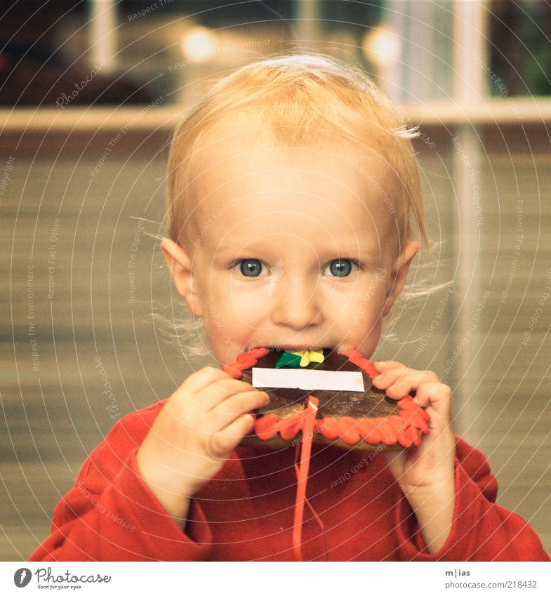 Naschfuchs mit Textfreiraum Kind Freude Auge Ernährung Essen Kindheit Zufriedenheit blond süß Kleinkind Appetit & Hunger genießen Süßwaren Lebensfreude lecker Backwaren