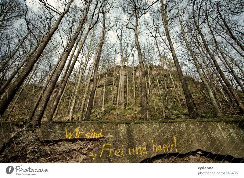Wir sind frei und happy! Lifestyle Freude Leben Zufriedenheit ruhig Umwelt Natur Landschaft Herbst Baum Wald Mauer Wand Schriftzeichen Graffiti einzigartig