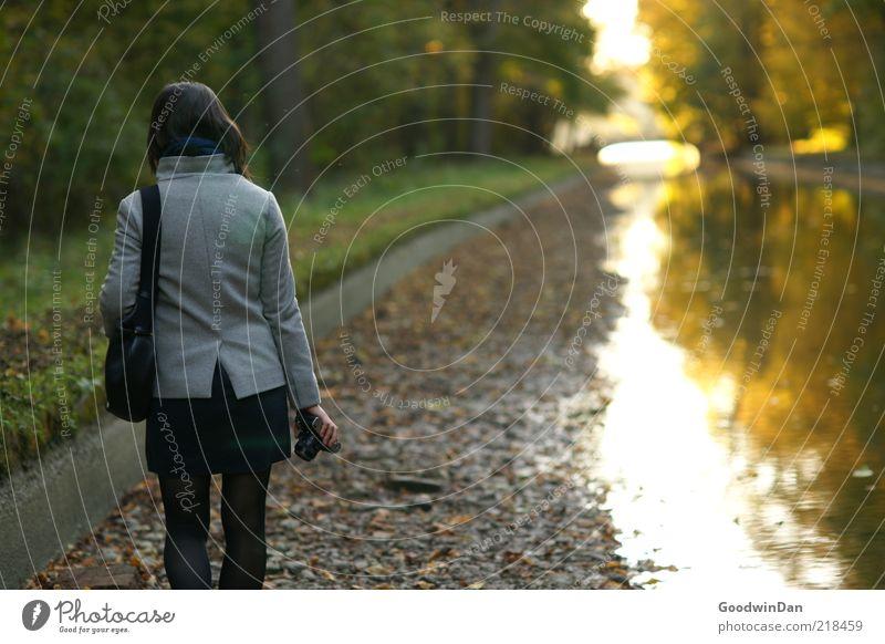 Träume III Mensch Natur Jugendliche Wasser schön Herbst feminin Gefühle Park Stimmung Umwelt frei Spaziergang Fotokamera genießen Flussufer