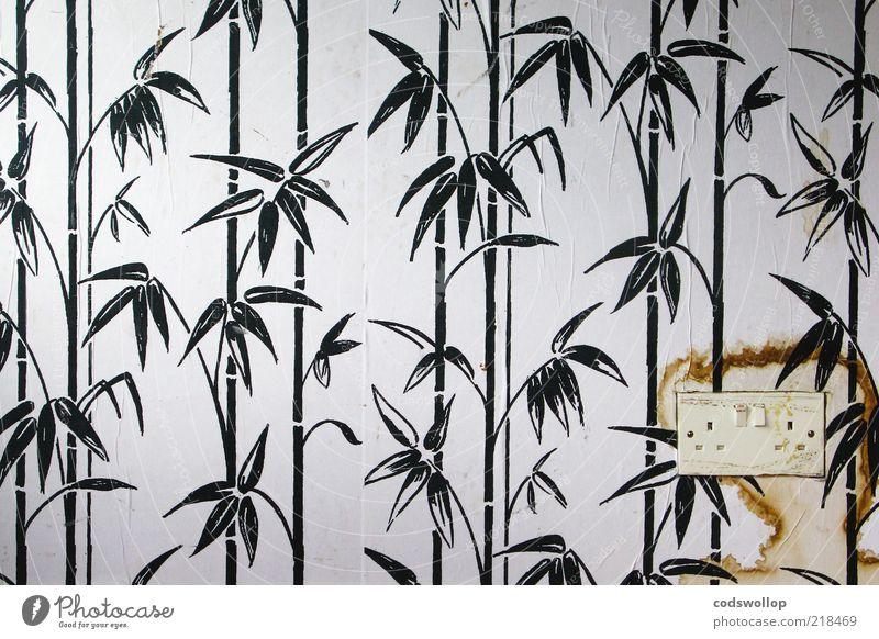 twin socket weiß schwarz Stil Raum dreckig Wohnung Energie Lifestyle Elektrizität Pferd trist Kitsch Dekoration & Verzierung Häusliches Leben einzigartig
