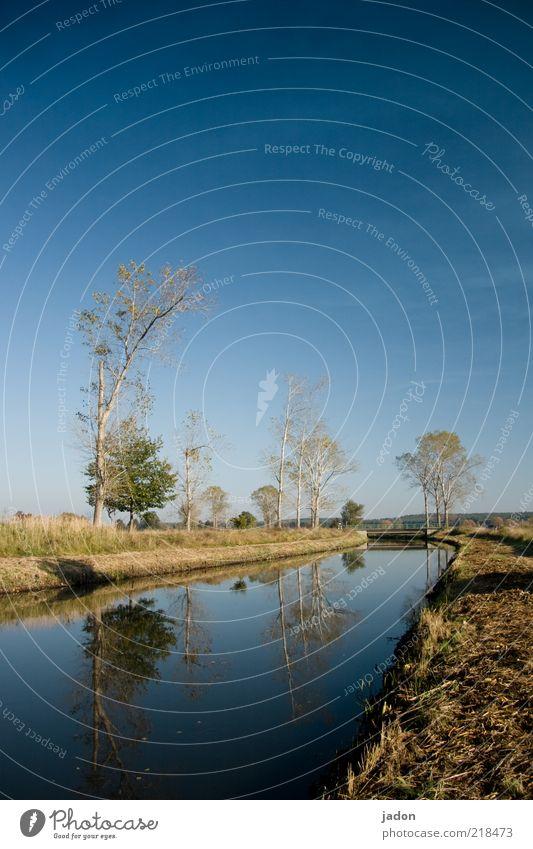 vor der brücke über den fluss Wasser schön Himmel Baum blau ruhig Ferne Wiese Herbst Gras Freiheit Landschaft Brücke entdecken Schönes Wetter