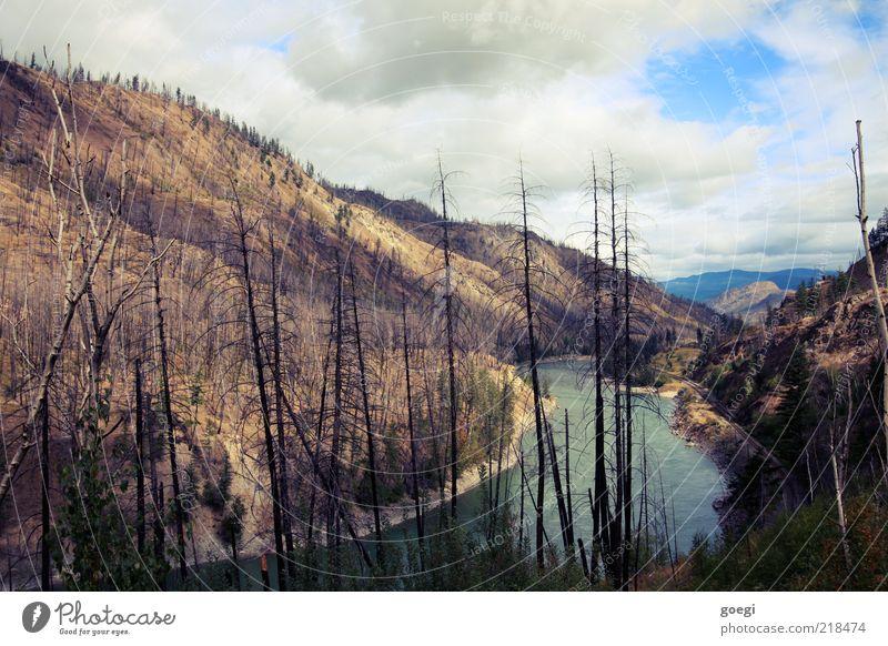 after the firestorm Natur Wasser Himmel Baum Wolken Einsamkeit Wald Berge u. Gebirge Wärme Landschaft Umwelt Erde Fluss kaputt Wandel & Veränderung