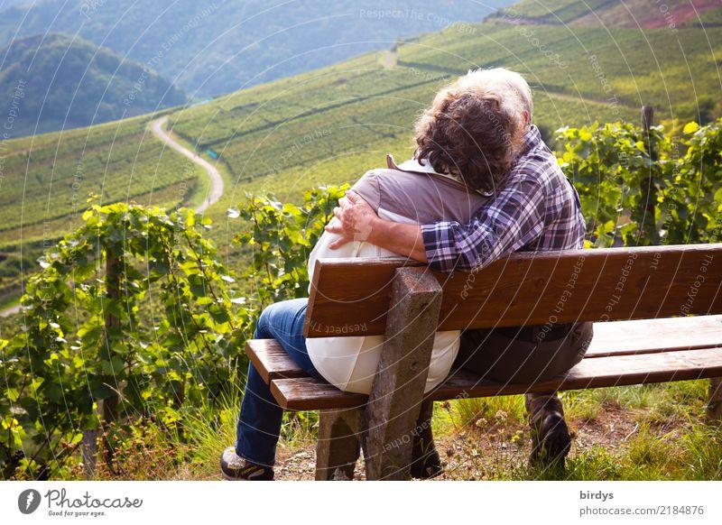 Zwei Senioren sitzen auf einer Bank im Weinberg und küssen sich Leben Wohlgefühl Ausflug wandern Weiblicher Senior Frau Männlicher Senior Mann Paar Partner 2