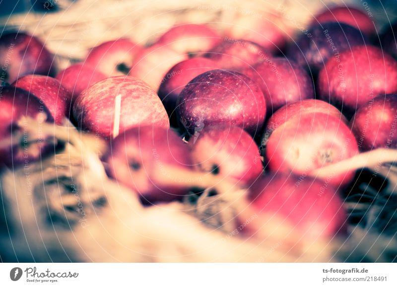 Apfelvogel-Nest Lebensmittel Frucht Ernährung Bioprodukte Slowfood Duft Erntedankfest Herbst Stroh lecker rund saftig braun grau rot Farbe Natur Apfelernte