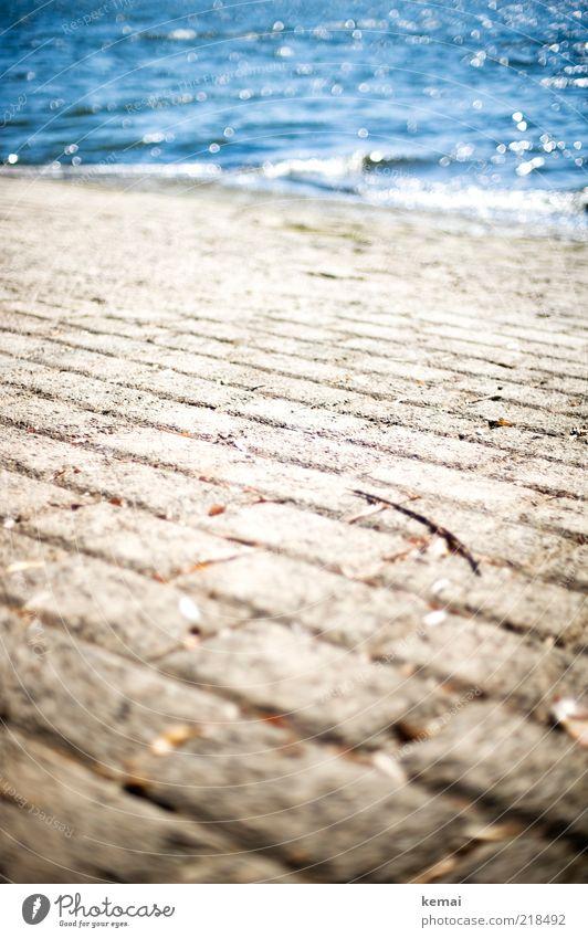 Weg ins Wasser Natur Sonnenlicht Sommer Schönes Wetter Fluss Rhein Wege & Pfade nass blau Wellen Stein Anlegestelle Farbfoto Gedeckte Farben Außenaufnahme