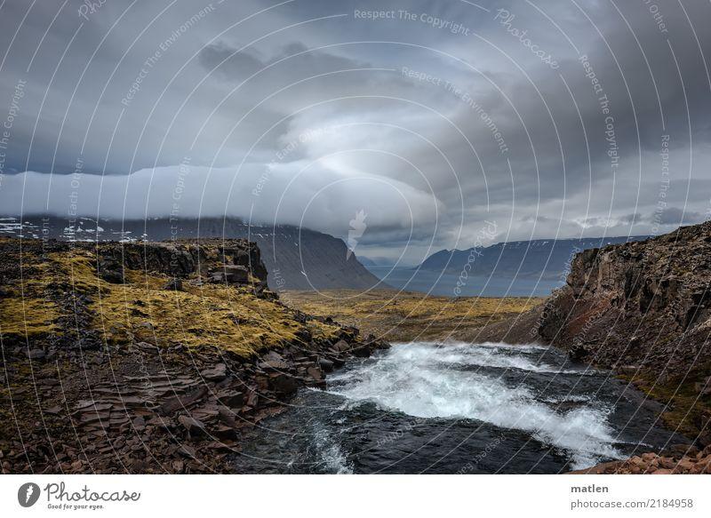 Dynjandi Natur Landschaft Pflanze Wasser Himmel Gewitterwolken Horizont Frühling schlechtes Wetter Gras Moos Felsen Berge u. Gebirge Wellen Flussufer Fjord