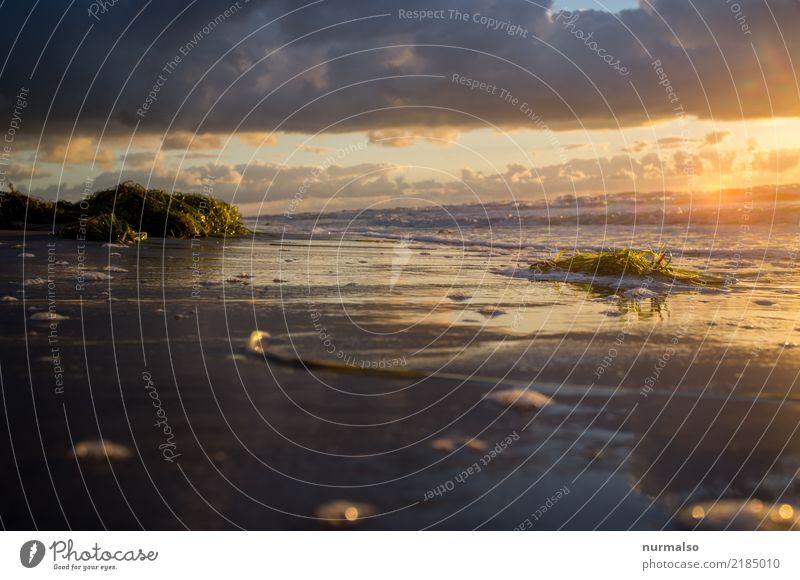 mehr Meer Ferien & Urlaub & Reisen Sommer Stadt Erholung Einsamkeit Strand Lifestyle Küste Stil Tourismus Freiheit Ausflug Wellen Insel Abenteuer