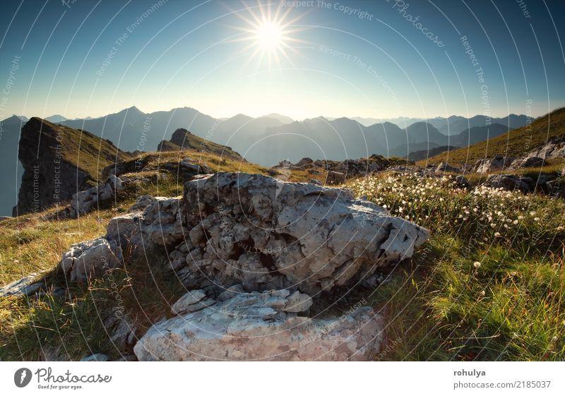 Morgen Sonnenschein über Felsen und Alpenblumen Himmel Natur Ferien & Urlaub & Reisen Pflanze blau Sommer Landschaft Blume Berge u. Gebirge Wiese Stein