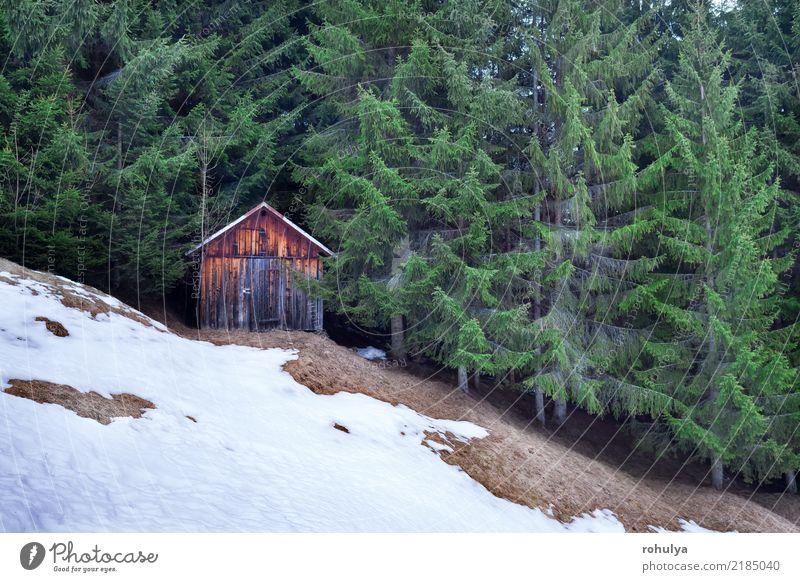 Holzhütte im Winter immergrünen Wald Jagd Ferien & Urlaub & Reisen Schnee Berge u. Gebirge wandern Haus Natur Landschaft Hügel Alpen Hütte Gebäude nadelhaltig