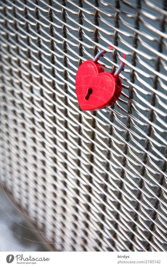 rot wie die Liebe Stil Brückengeländer Zeichen Herz Liebesschloss ästhetisch positiv silber Gefühle Freundschaft Zusammensein Verliebtheit Partnerschaft